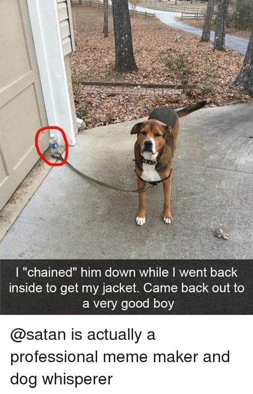 "meme maker: I ""chained"" him down while I went back  inside to get my jacket. Came back out to  a very good boy @satan is actually a professional meme maker and dog whisperer"