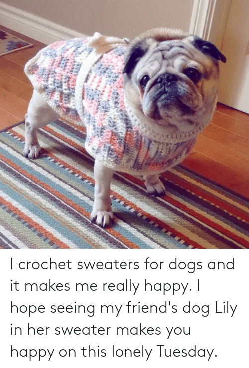 sweaters: I crochet sweaters for dogs and it makes me really happy. I hope seeing my friend's dog Lily in her sweater makes you happy on this lonely Tuesday.
