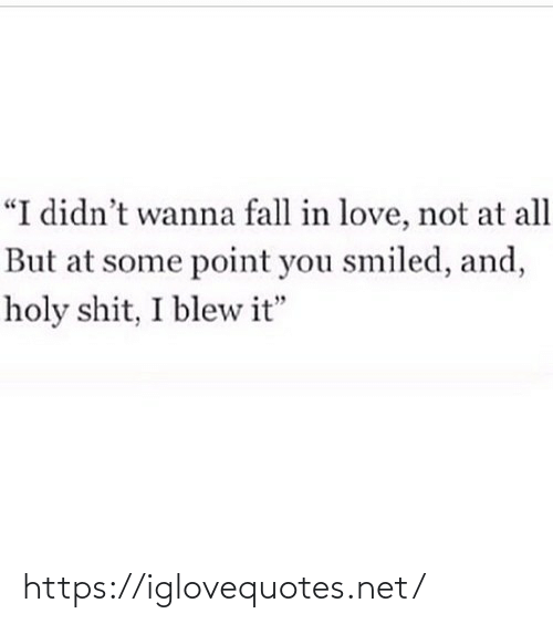 """Fall: """"I didn't wanna fall in love, not at all  But at some point you smiled, and,  holy shit, I blew it"""" https://iglovequotes.net/"""