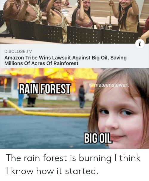 Amazon, Rain, and How: i  DISCLOSE.TV  Amazon Tribe Wins Lawsuit Against Big Oil, Saving  Millions Of Acres Of Rainforest  @mateenstewart  RAIN FOREST  BIG OIL The rain forest is burning I think I know how it started.