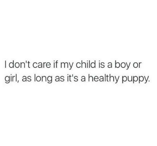 Boy Or Girl: I don't care if my child is a boy or  girl, as long as it's a healthy puppy.