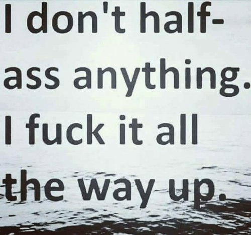 I Fuck: I don't half  ass anything.  I fuck it all  the way up
