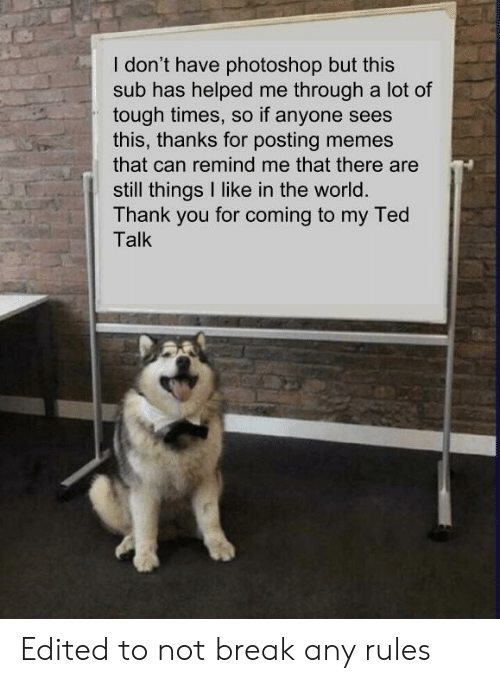 ted talk: I don't have photoshop but this  sub has helped me through a lot of  tough times, so if anyone sees  this, thanks for posting memes  that can remind me that there are  still things I like in the world  Thank you for coming to my Ted  Talk Edited to not break any rules