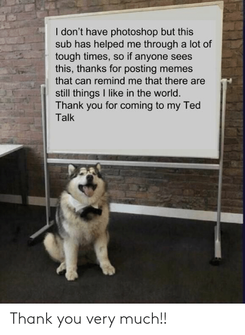 ted talk: I don't have photoshop but this  sub has helped me through a lot of  tough times, so if anyone sees  this, thanks for posting memes  that can remind me that there are  still things I like in the world.  Thank you for coming to my Ted  Talk Thank you very much!!