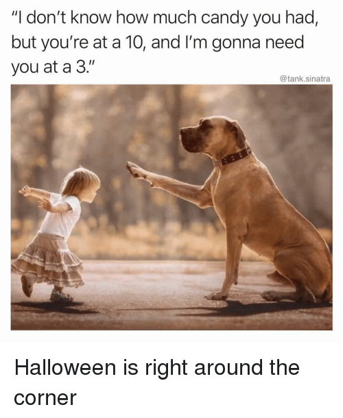 """Candy, Funny, and Halloween: """"I don't know how much candy you had,  but you're at a 10, and I'm gonna need  you at a 3.""""  @tank.sinatra Halloween is right around the corner"""
