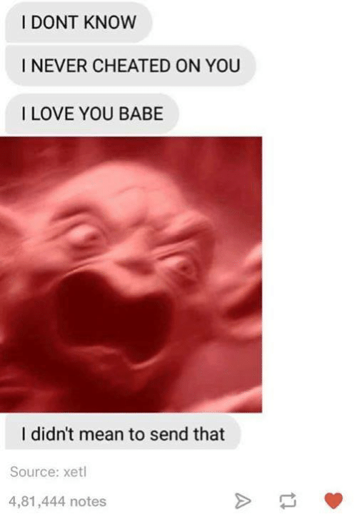 Dank, 🤖, and Means: I DONT KNOW  I NEVER CHEATED ON YOU  I LOVE YOU BABE  I didn't mean to send that  Source: xetl  4,81,444 notes