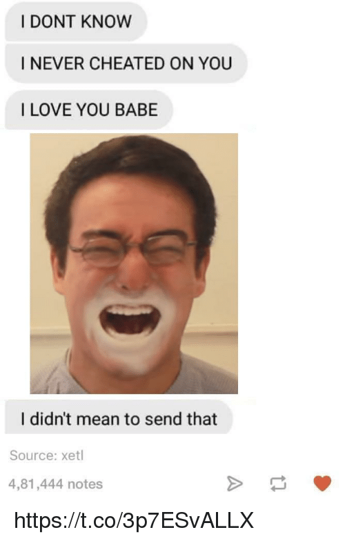 Love, I Love You, and Mean: I DONT KNOW  I NEVER CHEATED ON YOU  I LOVE YOU BABE  I didn't mean to send that  Source: xetl  4,81,444 notes https://t.co/3p7ESvALLX