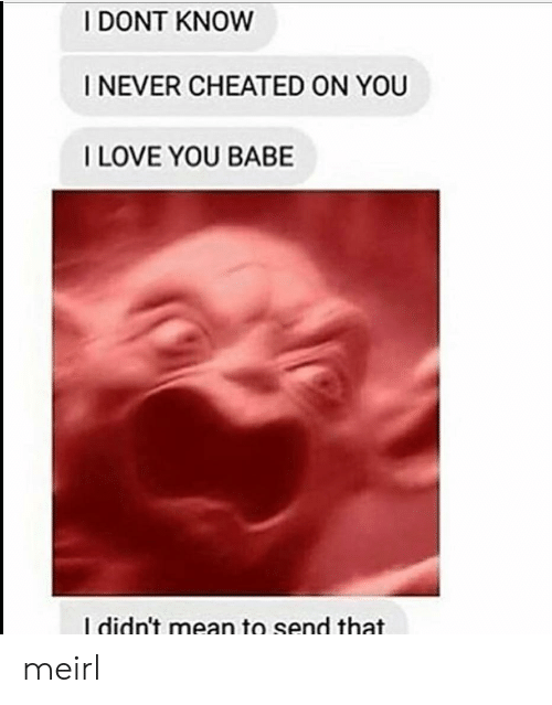 Love, I Love You, and Mean: I DONT KNOW  I NEVER CHEATED ON YOU  I LOVE YOU BABE  I didn't mean to send that meirl
