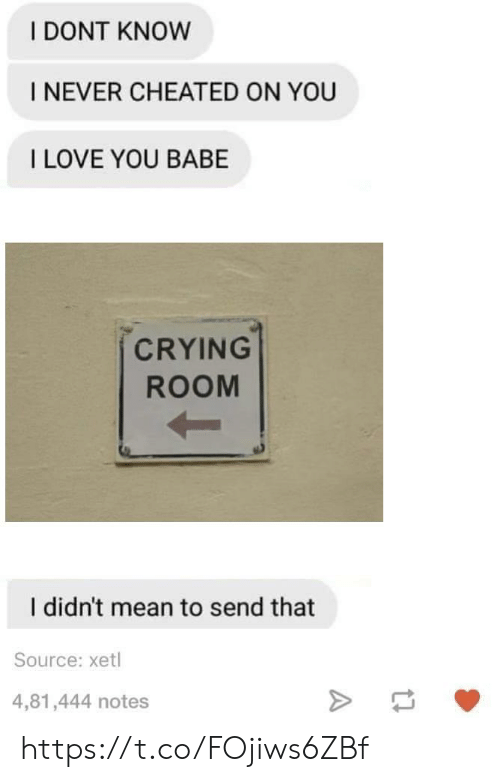 i love you babe: I DONT KNOW  I NEVER CHEATED ON YOU  I LOVE YOU BABE  CRYING  ROOM  I didn't mean to send that  Source: xetl  4,81,444 notes https://t.co/FOjiws6ZBf