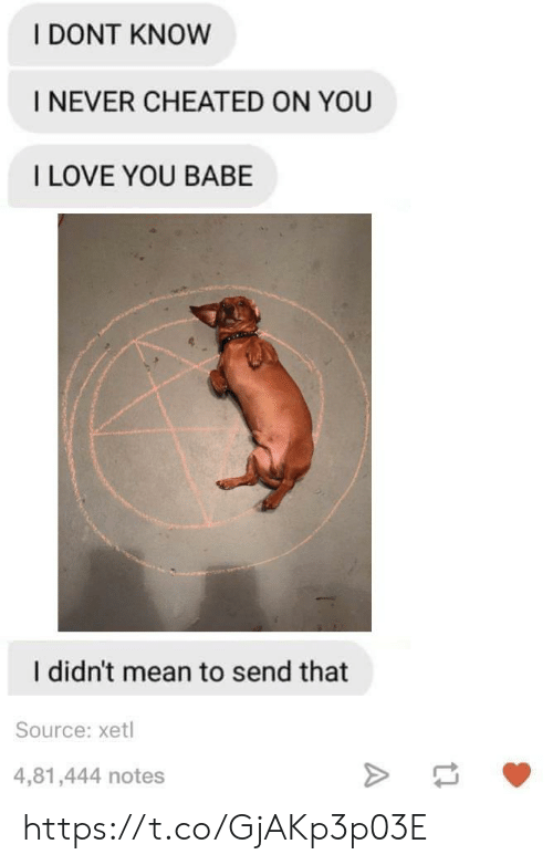 i love you babe: I DONT KNOW  I NEVER CHEATED ON YOU  I LOVE YOU BABE  I didn't mean to send that  Source: xetl  4,81,444 notes https://t.co/GjAKp3p03E