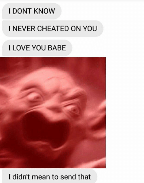 i love you babe: I DONT KNOW  INEVER CHEATED ON YOU  I LOVE YOU BABE  I didn't mean to send that