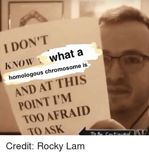 And At This Point Im Too Afraid To Ask: I DON'T  KNOW what a  homologous chromosome is  AND AT THIS  POINT I'M  TOO AFRAID  TO ASK Credit: Rocky Lam