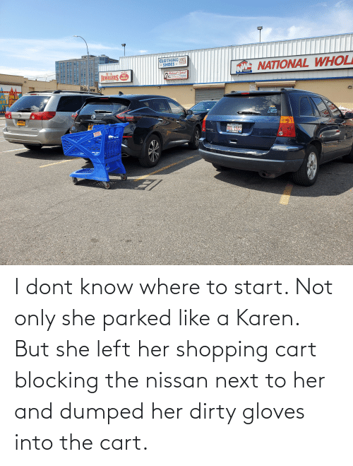 Dumped: I dont know where to start. Not only she parked like a Karen. But she left her shopping cart blocking the nissan next to her and dumped her dirty gloves into the cart.
