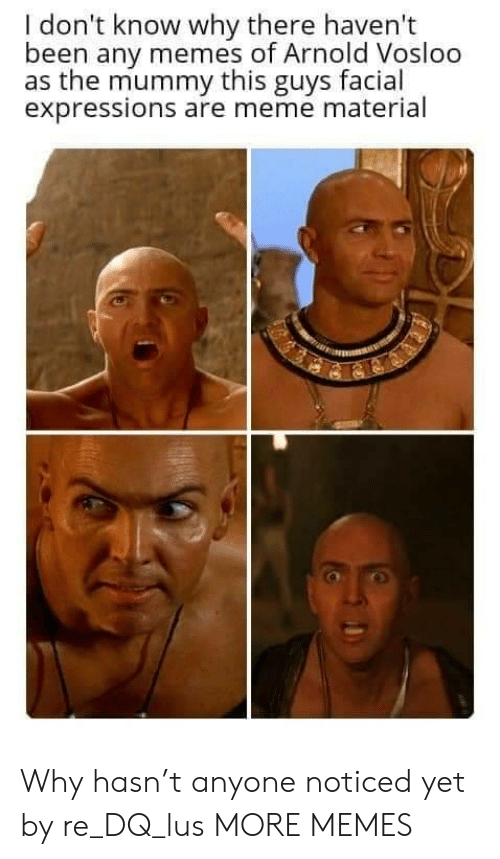 Dank, Meme, and Memes: I don't know why there haven't  been any memes of Arnold Vosloo  as the mummy this guys facial  expressions are meme material Why hasn't anyone noticed yet by re_DQ_lus MORE MEMES
