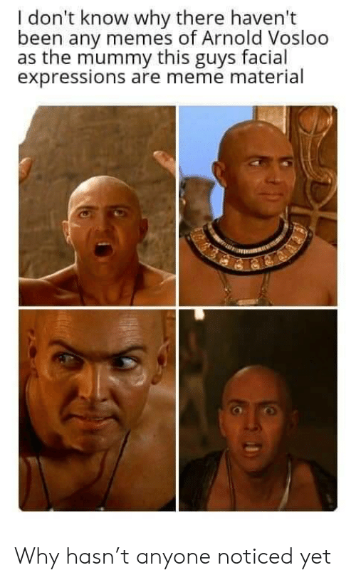 Memes Of: I don't know why there haven't  been any memes of Arnold Vosloo  as the mummy this guys facial  expressions are meme material Why hasn't anyone noticed yet