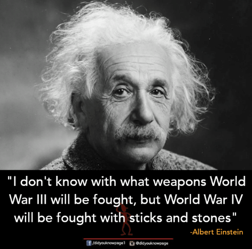 """Sticks And Stones: """"I  don't know with what weapons World  War lIIl will be fought, but World War IV  will be fought with sticks and stones""""  -Albert Einstein"""