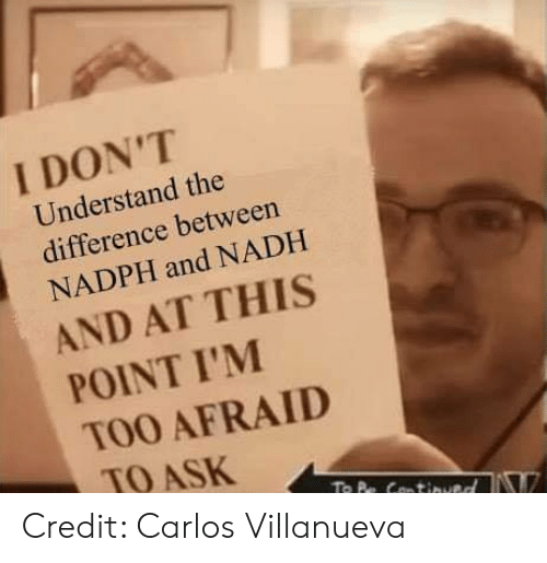 And At This Point Im Too Afraid To Ask: I DON'T  Understand the  difference between  NADPH and NADH  AND AT THIS  POINT I'M  TOO AFRAID  TO ASK Credit: Carlos Villanueva