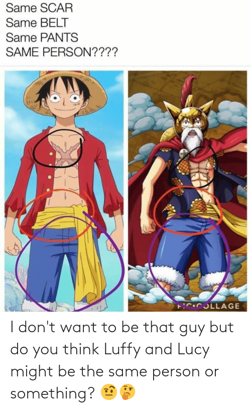 I Dont Want: I don't want to be that guy but do you think Luffy and Lucy might be the same person or something? 🤨🤔