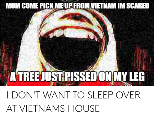 I Dont Want: I DON'T WANT TO SLEEP OVER AT VIETNAMS HOUSE
