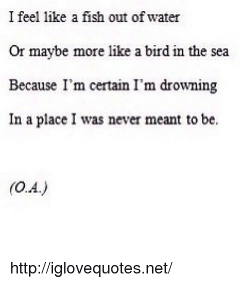 like a bird: I feel like a fish out of water  Or maybe more like a bird in the sea  Because I'm certain I'm drowning  In a place I was never meant to be. http://iglovequotes.net/