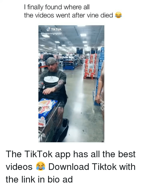 Memes, Videos, and Vine: I finally found where all  the videos went after vine died  TikTok  @heavenleighglusti  6  6  6 The TikTok app has all the best videos 😂 Download Tiktok with the link in bio ad