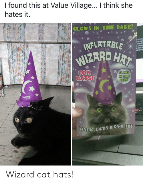hats: I found this at Value Village... I think she  hates it.  GLOWS IN THE DARK!  INFLATABLE  WIZARD HAI  orvacy  are usd  wit  FOR  CATS!  GLOWS  IN THE  DARK!  FAdMTR  MAGIC CATSLOVE IT! Wizard cat hats!