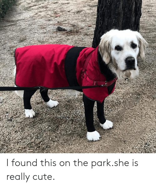 Cute, She, and Park: I found this on the park.she is really cute.