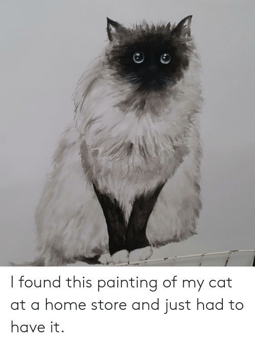 Home, Cat, and Painting: I found this painting of my cat at a home store and just had to have it.