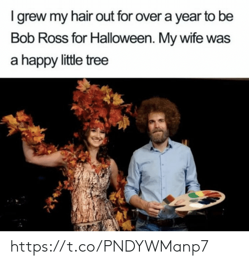 Hair Out: I grew my hair out for over a year to be  Bob Ross for Halloween. My wife was  a happy little tree https://t.co/PNDYWManp7