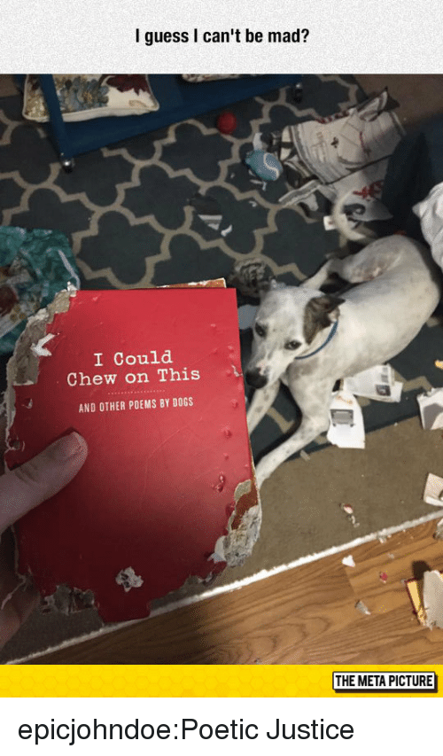 Dogs, Target, and Tumblr: I guess I can't be mad?  I Could  Chew on This  AND OTHER POEMS BY DOGS  THE META PICTURE epicjohndoe:Poetic Justice