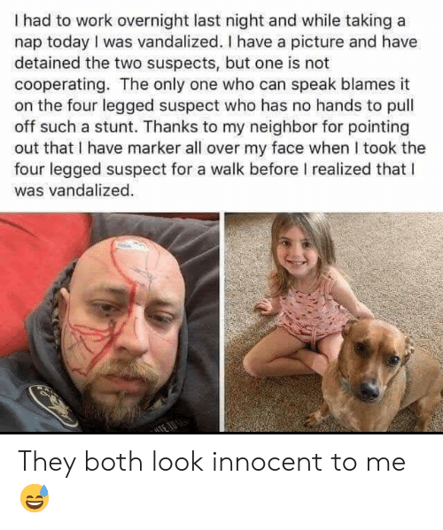 My Face When: I had to work overnight last night and while taking a  nap today I was vandalized. I have a picture and have  detained the two suspects, but one is not  cooperating. The only one who can speak blames it  on the four legged suspect who has no hands to pull  off such a stunt. Thanks to my neighbor for pointing  out that I have marker all over my face when I took the  four legged suspect for a walk before I realized that l  was vandalized They both look innocent to me 😅