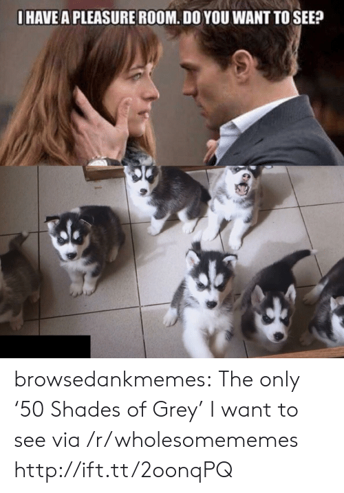 A Pleasure: I HAVE A PLEASURE ROOM. DO YOU WANT TO SEE? browsedankmemes: The only '50 Shades of Grey' I want to see via /r/wholesomememes http://ift.tt/2oonqPQ
