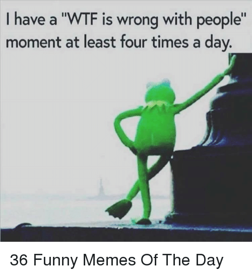 """Funny, Memes, and Wtf: I have a """"WTF is wrong with people""""  moment at least four times a day. 36 Funny Memes Of The Day"""