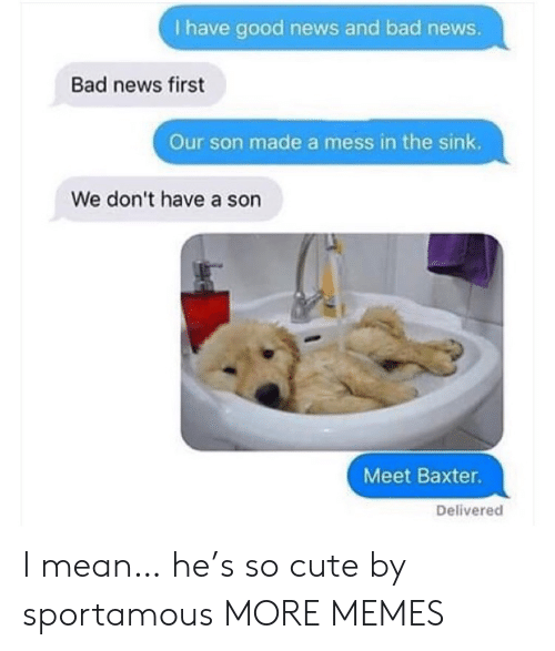 Bad News: I have good news and bad news.  Bad news first  Our son made a mess in the sink.  We don't have a son  Meet Baxter.  Delivered I mean… he's so cute by sportamous MORE MEMES