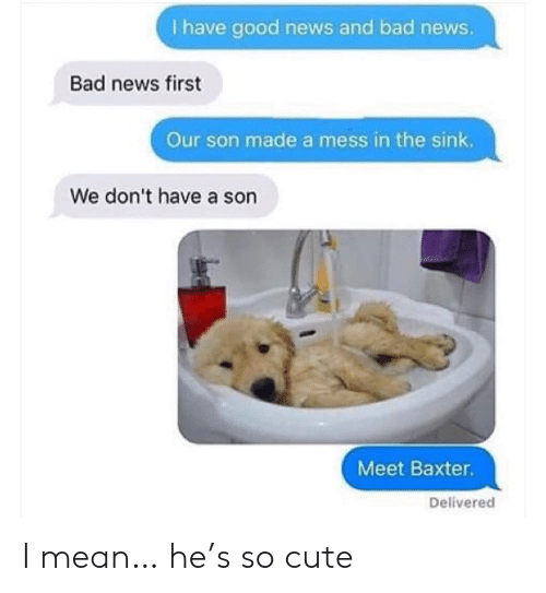 Bad News: I have good news and bad news.  Bad news first  Our son made a mess in the sink.  We don't have a son  Meet Baxter.  Delivered I mean… he's so cute