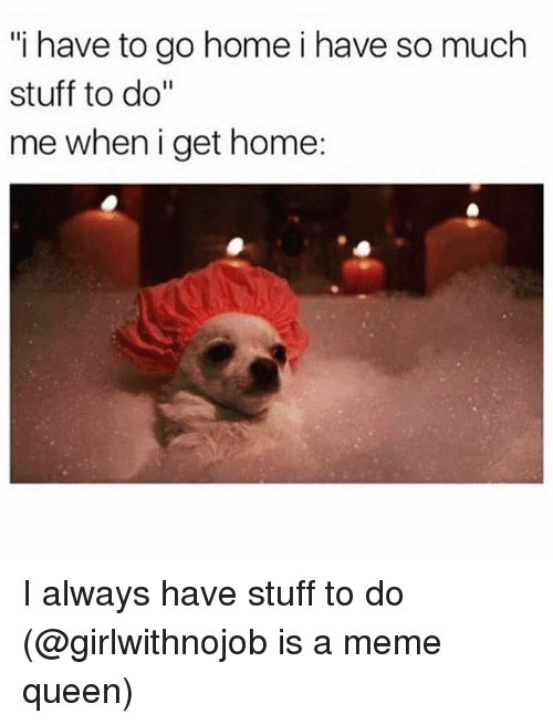 """Funny, Meme, and Queen: """"i have to go home i have so much  stuff to do""""  me wheni get home: I always have stuff to do (@girlwithnojob is a meme queen)"""