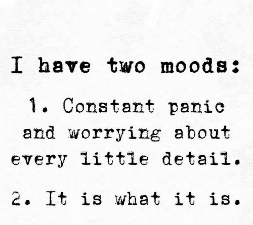 Moods: I have two moods:  . Constant panic  and worrying about  every little detail.  2. It is what it is.