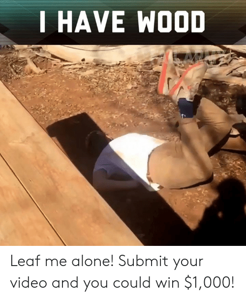 Being Alone, Memes, and Video: I HAVE WOOD Leaf me alone! Submit your video and you could win $1,000!