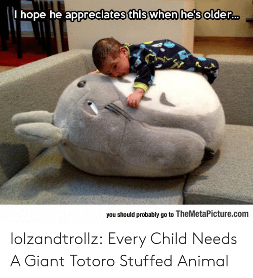Tumblr, Animal, and Blog: I hope he appreciates this when he's older..  you should probably go to TheMetaPicture.com lolzandtrollz:  Every Child Needs A Giant Totoro Stuffed Animal