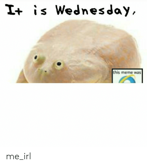 Meme, Wednesday, and Irl: I+ is Wednesday,  this meme was me_irl