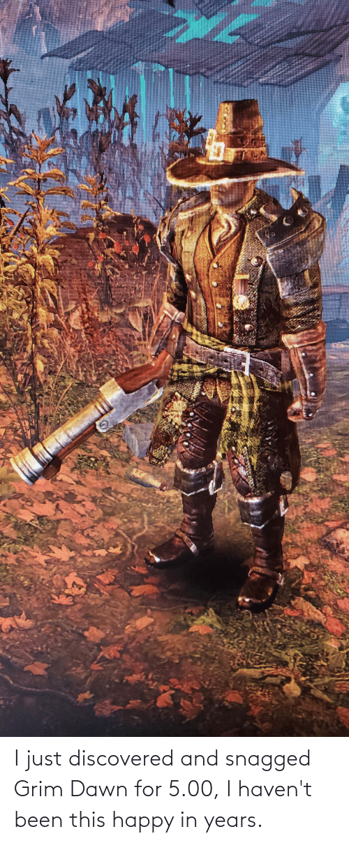 grim: I just discovered and snagged Grim Dawn for 5.00, I haven't been this happy in years.