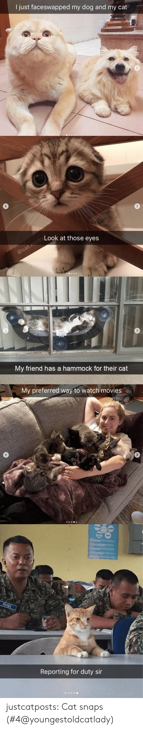 Hammock: I just faceswapped my dog and my cat   Look at those eyes   My friend has a hammock for their cat   My preferred way to watch movies   Reporting for duty sir justcatposts: Cat snaps  (#4@youngestoldcatlady)