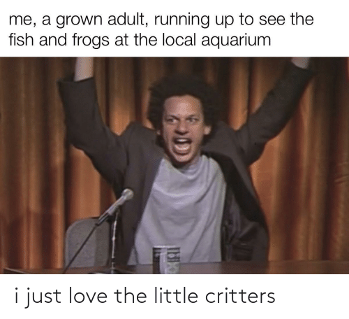 Love: i just love the little critters