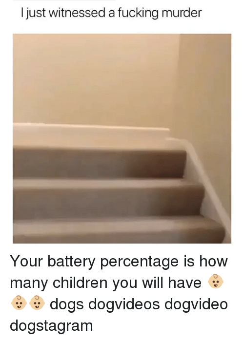 Children, Dogs, and Fucking: I just witnessed a fucking murder Your battery percentage is how many children you will have 👶🏼👶🏼👶🏼 dogs dogvideos dogvideo dogstagram