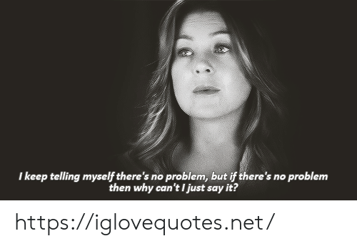 Just Say It: I keep telling myself there's no problem, but if there's no problem  then why can't I just say it? https://iglovequotes.net/