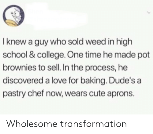 pot: I knew a guy who sold weed in high  school & college. One time he made pot  brownies to sell. In the process, he  discovered a love for baking. Dude's a  pastry chef now, wears cute aprons. Wholesome transformation
