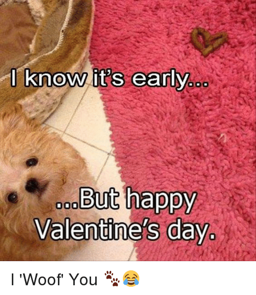 i know its early but happy valentines day i woof 13546740 i know its early but happy valentine's day i 'woof' you 🐾😂 meme