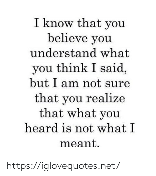 realize: I know that you  believe you  understand what  you think I said,  but I am not sure  that you realize  that what you  heard is not what I  meant. https://iglovequotes.net/