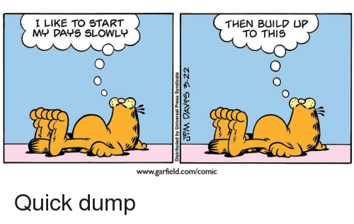 Build Up: I LIKE TO START  MY DAYS SLOWLY  THEN BUILD UP  TO THIS  www.garfield.com/comic Quick dump
