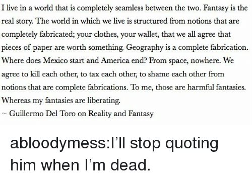 Guillermo Del Toro: I live in a world that is completely seamless between the two. Fantasy is the  real story. The world in which we live is structured from notions that are  completely fabricated; your clothes, your wallet, that we all agree that  pieces of paper are worth something Geography is a complete fabrication.  Where does Mexico start and America end? From space, nowhere. We  agree to kill each other, to tax each other, to shame each other from  notions that are complete fabrications. To me, those are harmful fantasies.  Whereas my fantasies are liberating.  Guillermo Del Toro on Reality and Fantasy abloodymess:I'll stop quoting him when I'm dead.